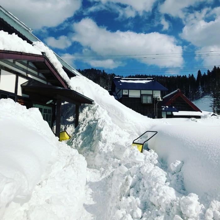 森の家 雪